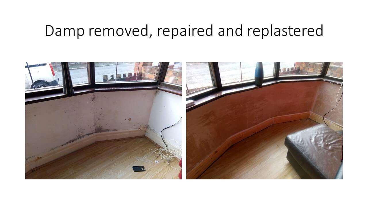 Damp Repair